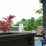 luxury-houses-with-nature-view-in-kemer-goynuk-interior-015.jpg