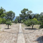 furnished-homes-in-konyaalti-surrounded-by-fruit-trees-007.jpg